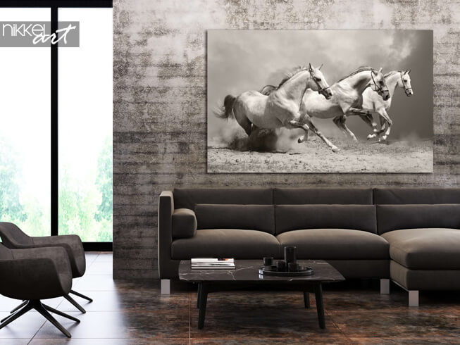 Photo sur Aluminium paarden
