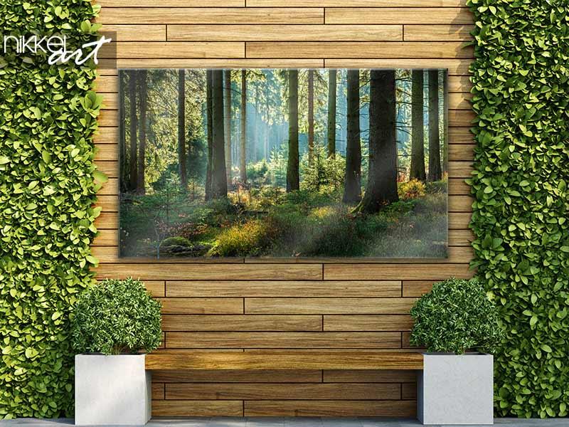 Poster de jardin Forêt ensoleillée d'épicéas en automne
