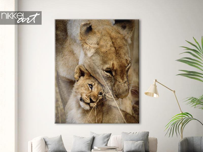 Photo sur toile Mère et enfant Lions