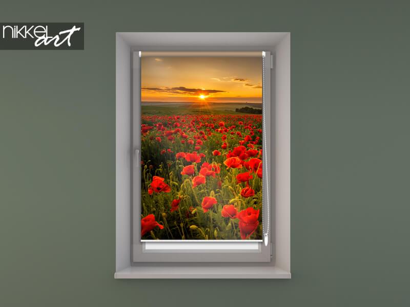 store enrouleur photo sur le châssis de la fenêtre