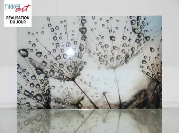 Crédence de cuisine en verre imprimé Pissenlits et eau