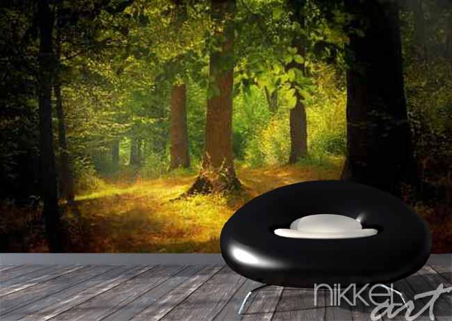 Papiers peints Lumière dans la forêt