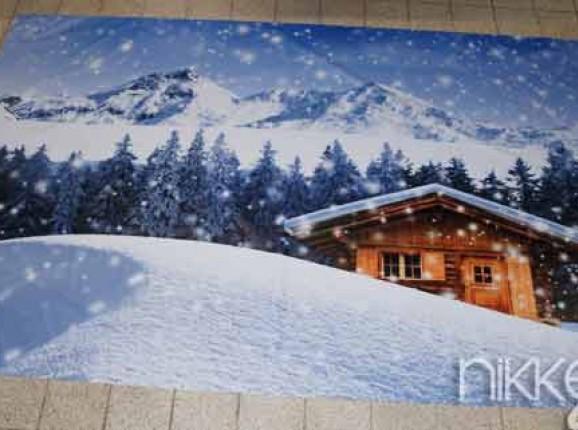 Photo sur Bache hiver