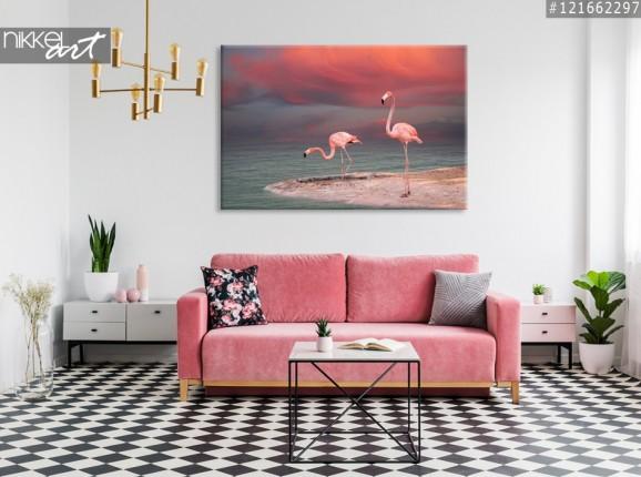 Photo sur Toile Flamants roses
