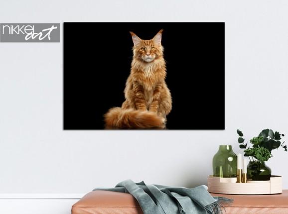Photo de votre chat sur aluminium