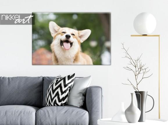Photo de votre chien sur toile