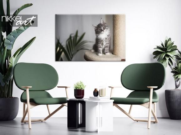 Photo de votre chat sur toile