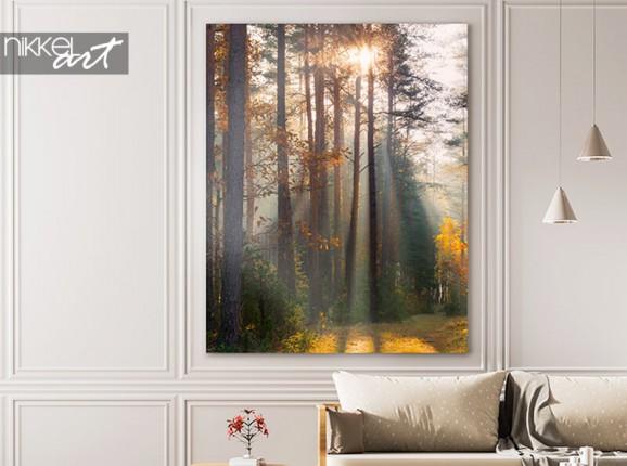 Forêt d'automne sur aluminium