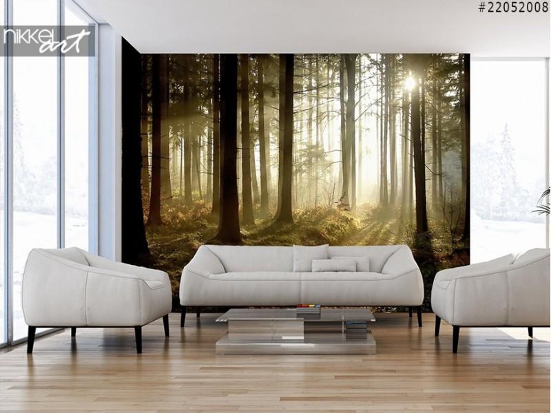 photo sur plexiglas venice. Black Bedroom Furniture Sets. Home Design Ideas