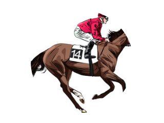 racing horse and jockey